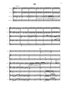 Симфония No.9 для малого симфонического оркестра в 4 частях: 3 часть - партитура by Vladimir Polionny