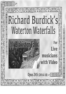 Waterton Waterfalls, Op.245: II. Blakeston Falls for English horn, horn, harp, cello and videotape by Richard Burdick
