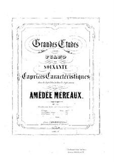 Grandes études pour piano en soixante caprices caractéristiques, Op.63: Etudes No.13-36 by Amédée Méreaux