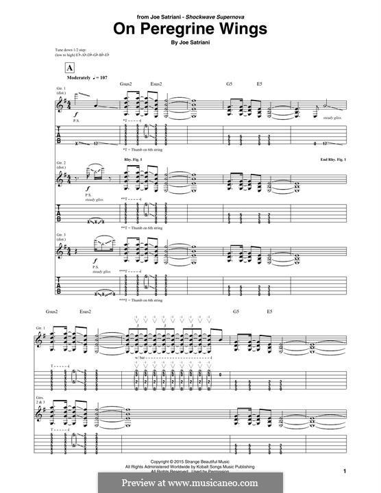 On Peregrine Wings: On Peregrine Wings by Joe Satriani