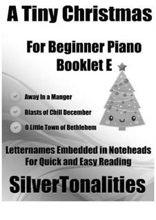 A Tiny Christmas for Beginner Piano Booklet E: A Tiny Christmas for Beginner Piano Booklet E by folklore