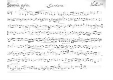 Sardana 'Somni Gris' for String Quartet: Sardana 'Somni Gris' for String Quartet by Juli Garreta