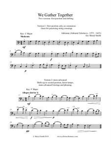 Easy Cello Solos: Student edition (no accompaniment) by Franz Lehár, Franz Schubert, Johannes Brahms, folklore, Franz Xaver Gruber, Adrianus Valerius, James Lord Pierpont, Sheryl Smith