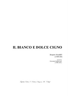 Il bianco e dolce cigno: For mixed choir by Jacques Arcadelt