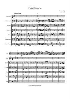 Flute Concerto: Flute Concerto by Jordan Grigg