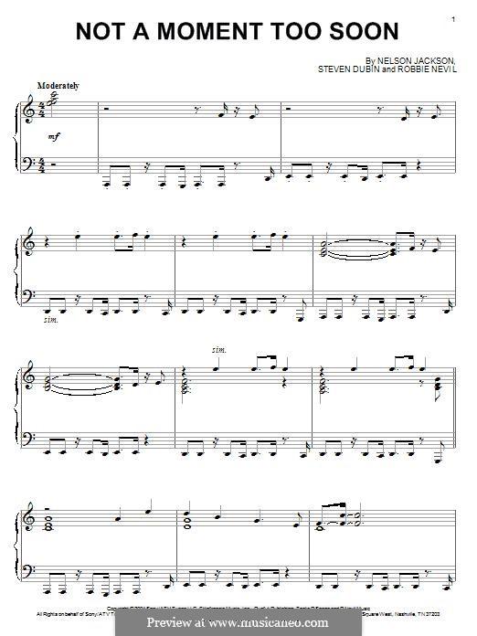 Not a Moment Too Soon (David Lanz): Not a Moment Too Soon (David Lanz) by Robbie Nevil, Nelson Jackson, Steven Dubin