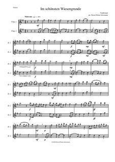 Five German Folk Songs: Im schönsten Wiesengrunde, for 2 flutes by folklore