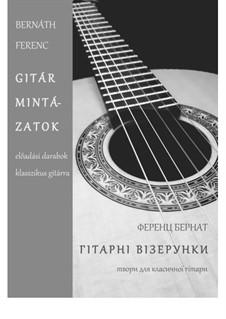Guitar Paintings: Guitar Paintings by Ferenc Bernath