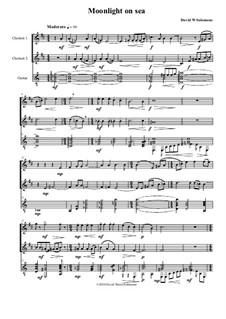 Moonlight on sea: For 2 clarinets and guitar by David W Solomons