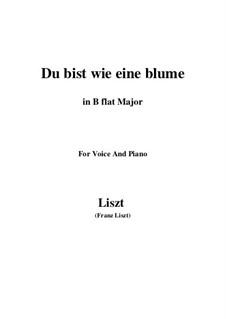 Du bist wie eine blume, S.287: B flat Major by Franz Liszt