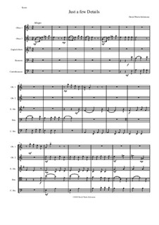 Just a Few Details: For double-reed quintet (2 oboes, cor anglais, bassoon, contrabassoon) by David W Solomons
