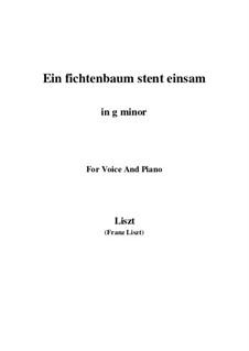 Ein Fichtenbaum steht einsam, S.309: G minor by Franz Liszt