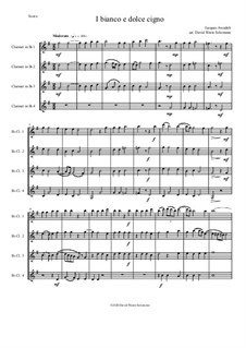 Il bianco e dolce cigno: For 4 clarinets by Jacques Arcadelt