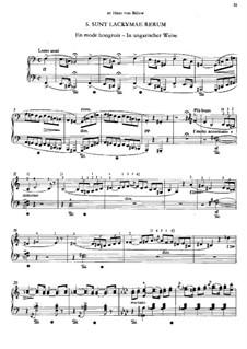 Troisième année, S.163: No.5 Sunt lacrymae rerum by Franz Liszt