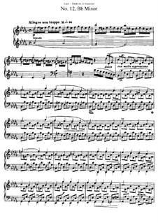 12 этюдов: Этюд No.12 by Franz Liszt