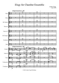 Elegy for Chamber Ensemble: Elegy for Chamber Ensemble by Jordan Grigg