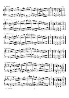 Scales and Chords in All the Major and Minor Keys: Scales and Chords in All the Major and Minor Keys by Ferdinand Schultz