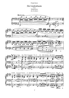 No.5 Der Lindenbaum (The Linden Tree): Arrangement for piano, S.561 No.7 by Franz Schubert