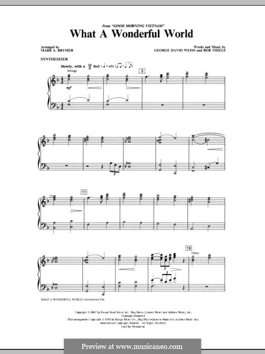 What a Wonderful World, for Orchestra (arr. Mark Hayes): Synthesizer part by Bob Thiele, George David Weiss