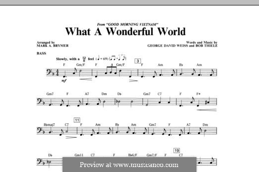 What a Wonderful World, for Orchestra (arr. Mark Hayes): Bass part by Bob Thiele, George David Weiss