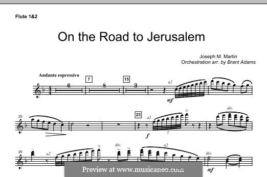 On The Road To Jerusalem: Flute 1 & 2 part by Joseph M. Martin
