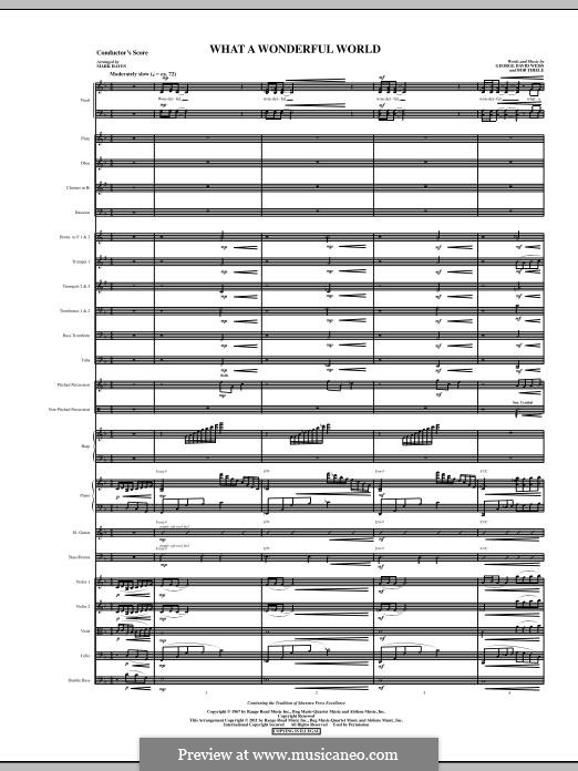 What a Wonderful World, for Orchestra (arr. Mark Hayes): Full score by Bob Thiele, George David Weiss