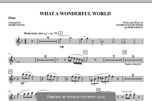 What a Wonderful World, for Orchestra (arr. Mark Hayes): Flute part by Bob Thiele, George David Weiss
