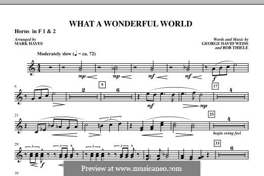 What a Wonderful World, for Orchestra (arr. Mark Hayes): F Horn 1,2 part by Bob Thiele, George David Weiss
