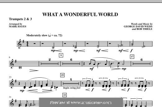 What a Wonderful World, for Orchestra (arr. Mark Hayes): Bb Trumpet 2,3 part by Bob Thiele, George David Weiss