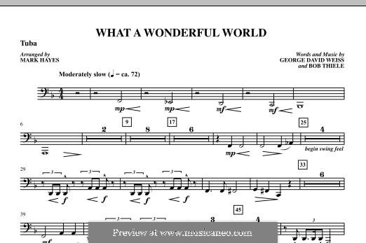 What a Wonderful World, for Orchestra (arr. Mark Hayes): Tuba part by Bob Thiele, George David Weiss