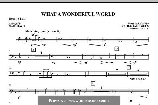 What a Wonderful World, for Orchestra (arr. Mark Hayes): Double Bass part by Bob Thiele, George David Weiss