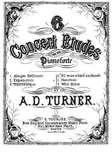 Six Concert Etudes: Complete set by Alfred Dudley Turner