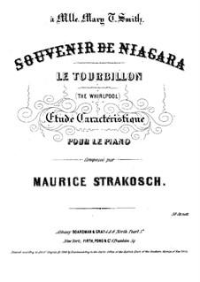 Le Tourbillon (The Whirlpool): Le Tourbillon (The Whirlpool) by Maurice Strakosch