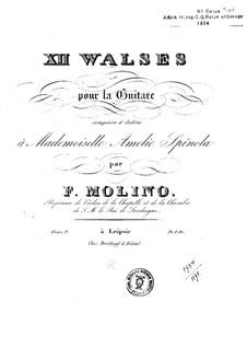 Twelve Waltzes, Op.9: For guitar by Francesco Molino