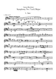 Symphony No.7 in E Major, WAB 107: Horns parts by Anton Bruckner