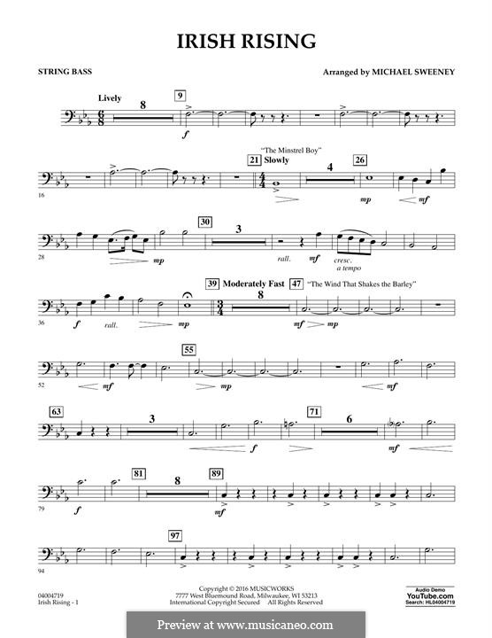 Irish Rising: String Bass part by folklore
