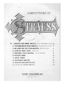 Chants du Danube, Op.127: For piano by Johann Strauss (Sohn)