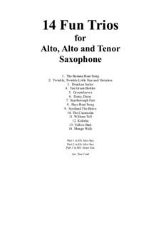 14 Fun Trios: For alto, alto and tenor saxophone by folklore