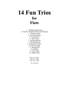 14 Fun Trios: For flute by folklore