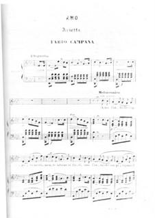 Amo. Arietta: Amo. Arietta by Fabio Campana