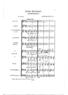 Salut d'amour (Love's Greeting), Op.12: For orchestra by Edward Elgar