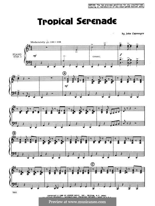 Tropical Serenade: Piano Accompaniment by John Caponegro
