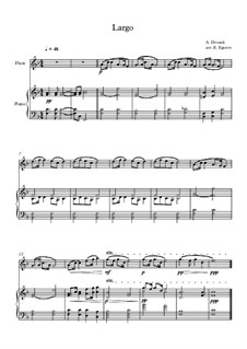 Movement II (Largo): For flute and piano by Antonín Dvořák