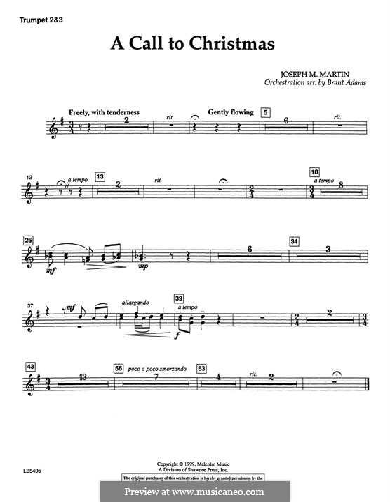 Canticle of Joy: Trumpet 2 & 3 part by Joseph M. Martin