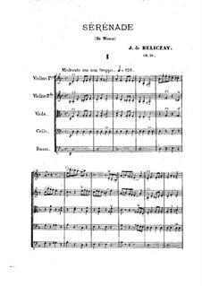Serenade for Strings in D Minor, Op.36: Serenade for Strings in D Minor by Gyula Beliczay