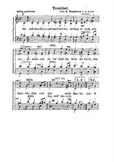 Trostlied: Trostlied by Moritz Hauptmann
