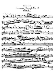 No.13 in A Minor, S.244: For orchestra – flutes parts by Franz Liszt