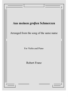 Twelve Songs, Op.5: No.1 Aus meinen groβen Schmerzen, for Violin and Piano by Robert Franz