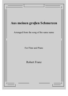 Twelve Songs, Op.5: No.1 Aus meinen groβen Schmerzen, for Flute and Piano by Robert Franz