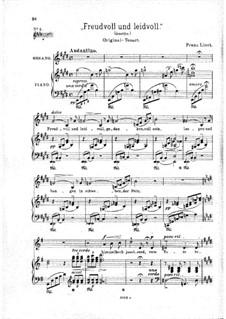 Freudvoll und leidvoll, S.280: E-Dur by Franz Liszt